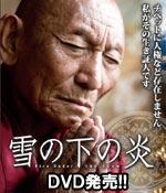 雪の下の炎 公式サイト DVD発売!!