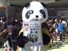 上野動物園パンダ公開日にフリーチベット!